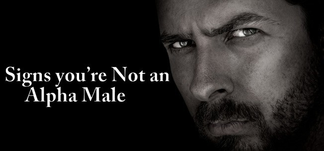 Signs you're Not an Alpha Male