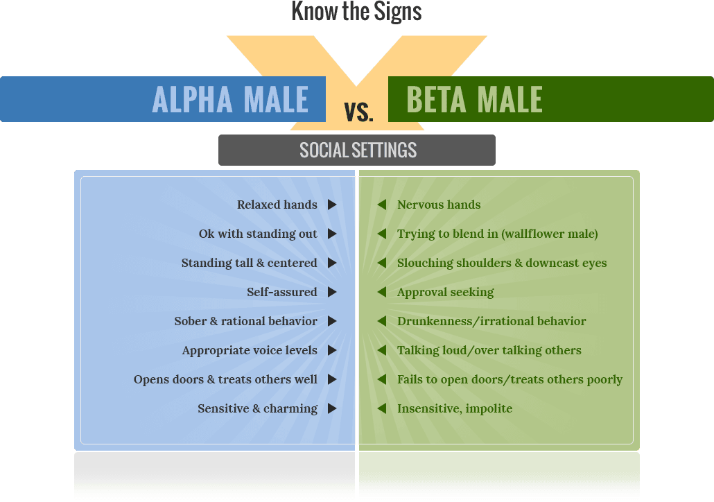 alpha male and beta female relationship movies